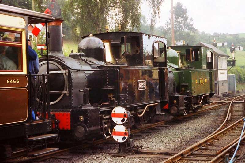 "Locomotives ""Earl"" and ""Countess"" at Llanfair Caerinion on Gala Day"